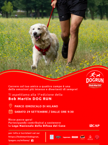 LOCANDINA Bob Martin Dog Run